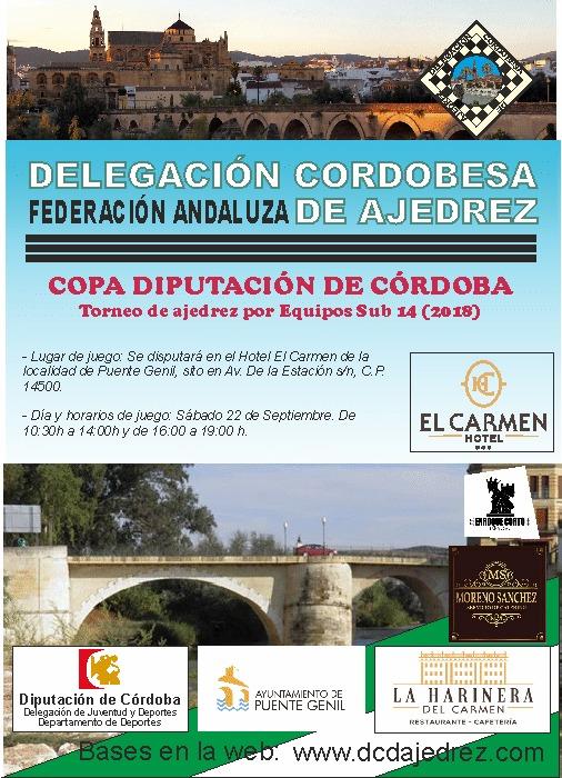 Torneo Ajedrez Copa Diputacion Cordoba Equipos sub-14 Puente Genil 2018